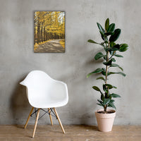 Fall Path Rural Landscape Canvas Wall Art Prints 18×24 - PIPAFINEART