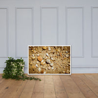 Broken Seashells and Sand Coastal Nature Photo Framed Wall Art Print White / 24×36 - PIPAFINEART