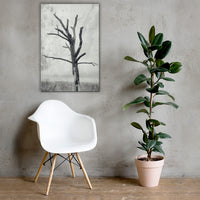Rotting Away Alone Black and White Floral Nature Canvas Wall Art Prints 24×36 - PIPAFINEART