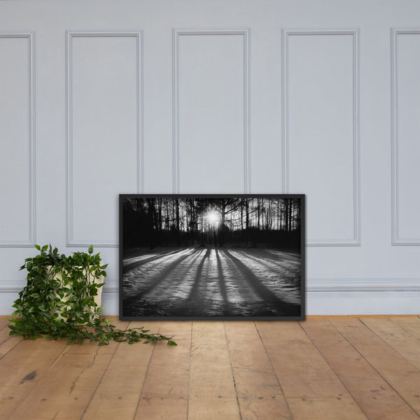Winter Shadows from the Trees Black & White Framed Photo Paper Wall Art Prints Black / 24×36 - PIPAFINEART