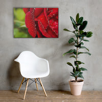 Bold and Beautiful Floor Floral Nature Canvas Wall Art Prints 24×36 - PIPAFINEART