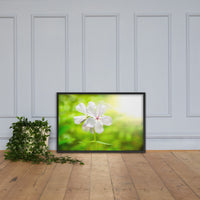 Beauty of the Forest Floor Floral Nature Photo Framed Wall Art Print Black / 24×36 - PIPAFINEART