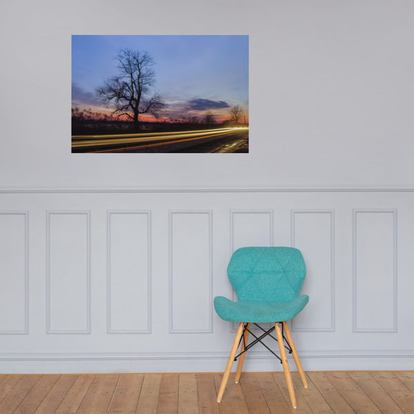 Wicked Tree Landscape Photo Loose Wall Art Prints 24×36 - PIPAFINEART
