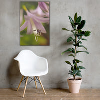Close-up Hosta Bloom Floral Nature Canvas Wall Art Prints 24×36 - PIPAFINEART