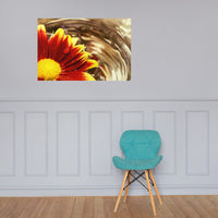 Floating Mum Floral Nature Photo Loose Unframed Wall Art Prints 24×36 - PIPAFINEART