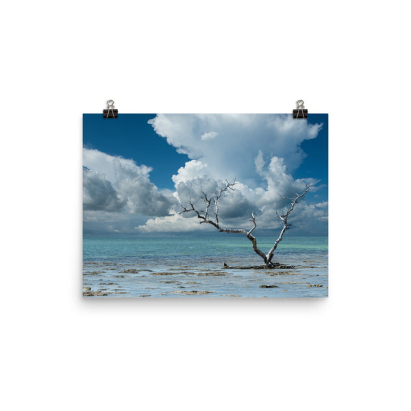 Wanderlust Traditional Color Coastal Landscape Photo Loose Unframed Wall Art Prints  - PIPAFINEART