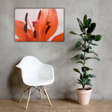 Lily Stigma Floral Nature Canvas Wall Art Prints 24×36 - PIPAFINEART