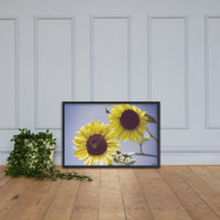 Aged Sunflowers Against Sky Floral Nature Photo Framed Wall Art Print Black / 24×36 - PIPAFINEART