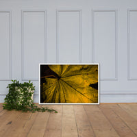 Seasons Change Botanical Nature Photo Framed Wall Art Print White / 24×36 - PIPAFINEART