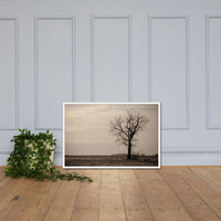 Lonely Tree in Black and White Rural Landscape Framed Photo Paper Wall Art Prints White / 24×36 - PIPAFINEART
