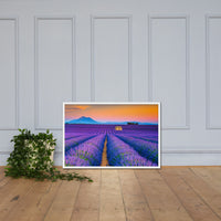 Blooming Lavender Field and Sunset Floral Rural / Farmhouse / Country Style Landscape Scene Photo Framed Photo Paper Wall Art Prints White / 24×36