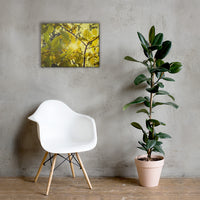 Aged Golden Leaves Botanical Nature Canvas Wall Art Prints 18×24 - PIPAFINEART