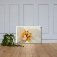 Eye of Peony Floral Nature Photo Framed Wall Art Print White / 24×36 - PIPAFINEART