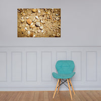 Broken Seashells and Sand Coastal Nature Photo Loose Unframed Wall Art Prints 24×36 - PIPAFINEART