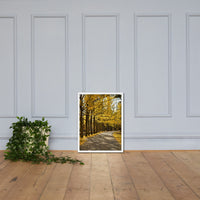 Fall Path Nature Landscape Framed Photo Paper Wall Art Prints - Rural / Farmhouse / Country Style Landscape Scene White / 18×24