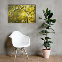 Aged Golden Leaves Botanical Nature Canvas Wall Art Prints 24×36 - PIPAFINEART