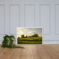 Remnant of Better Days Landscape Framed Photo Paper Wall Art Prints White / 24×36 - PIPAFINEART