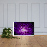 Abstract Flower Floral Nature Photo Framed Wall Art Print White / 24×36 - PIPAFINEART