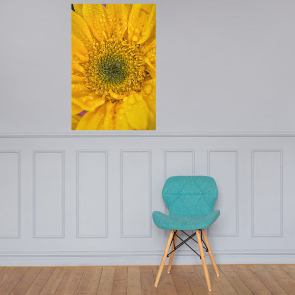 Joyful Color Floral Nature Photo Loose Unframed Wall Art Prints 24×36 - PIPAFINEART