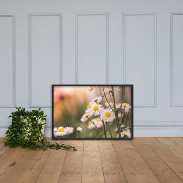Philadelphia Fleabane Cluster Softened Floral Nature Photo Framed Wall Art Print Black / 24×36 - PIPAFINEART