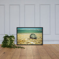 Daydreams on the Shore Coastal Nature Photo Framed Wall Art Print Black / 24×36 - PIPAFINEART