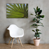 Colorized Wide Palm Leaves Botanical Nature Canvas Wall Art Prints 24×36 - PIPAFINEART