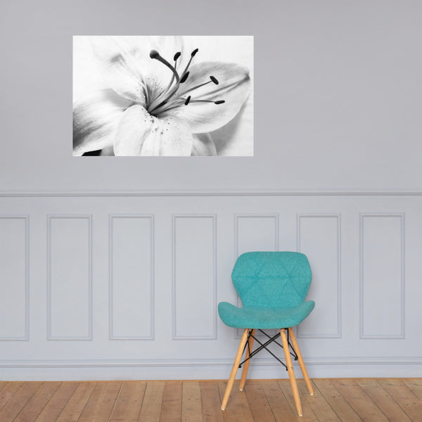 High Key Lily Floral Nature Photo Loose Unframed Wall Art Prints 24×36 - PIPAFINEART