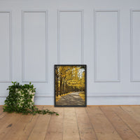 Fall Path Nature Landscape Framed Photo Paper Wall Art Prints - Rural / Farmhouse / Country Style Landscape Scene Black / 18×24