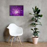 Abstract Flower Floral Nature Canvas Wall Art Prints 18×24 - PIPAFINEART