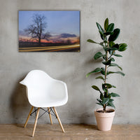 Wicked Tree Rural Landscape Canvas Wall Art Prints 24×36 - PIPAFINEART
