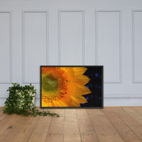 Close-up Sunflower Floral Nature Photo Framed Wall Art Print Black / 24×36 - PIPAFINEART