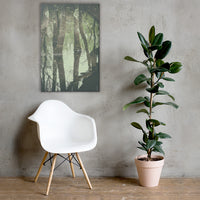 Early Spring Reflections on the Marsh Botanical Nature Canvas Wall Art Prints 24×36 - PIPAFINEART