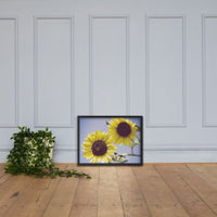 Aged Sunflowers Against Sky Floral Nature Photo Framed Wall Art Print Black / 18×24 - PIPAFINEART