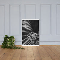 Bloodflowers and Palm Black and White Framed Wall Art Print White / 24×36 - PIPAFINEART