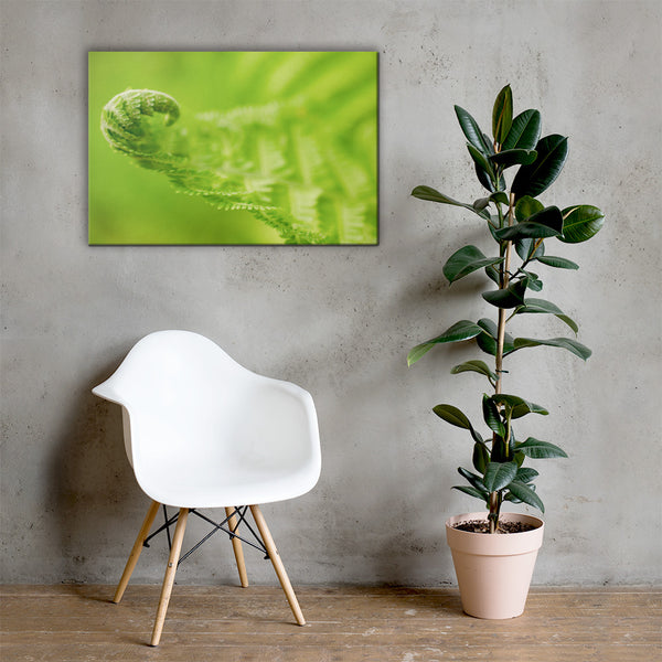 Fern Curl Botanical Nature Canvas Wall Art Prints 24×36 - PIPAFINEART