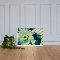 Melancholy Flower Floral Nature Photo Framed Wall Art Print White / 24×36 - PIPAFINEART
