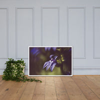 Dramatic Blue Lobelia, Blue Cardinal Flower - Abstract Merlot Effect Floral Nature Photo Framed Wall Art Print White / 24×36 - PIPAFINEART