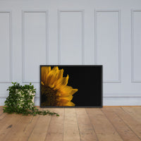Sunflower in Corner Floral Nature Photo Framed Wall Art Print Black / 24×36 - PIPAFINEART