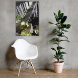 Nature Taking Over Nature Canvas Wall Art Prints 24×36 - PIPAFINEART