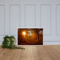 Autumn Sunset in the Trees Rural / Farmhouse / Country Style Landscape Scene Photo Framed Photo Paper Wall Art Prints White / 24×36