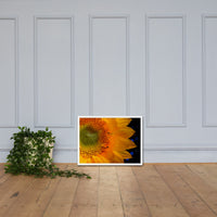 Close-up Sunflower Floral Nature Photo Framed Wall Art Print White / 18×24 - PIPAFINEART