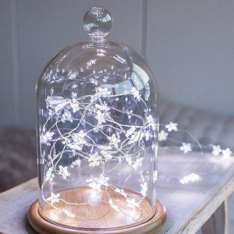 Star LED Copper Wire String Lights. 3 Meters long. Battery Operated.