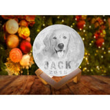 Customized Pet Portrait 3D Moon Lamp-nasagiftshop-White and Warm White-10CM-Moon & Back