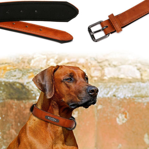 Personalized Engraved Vintage Nameplate Leather Dog Collar-Moon & Back-Dark Olive Green-L-Moon & Back