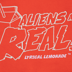 Aliens Are Real Hoodie (Orange)