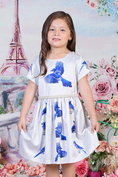Little Girls Blue Jay Satin Dress