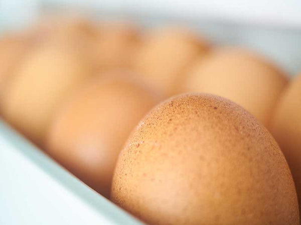 Hayden Fresh Farm Eggs