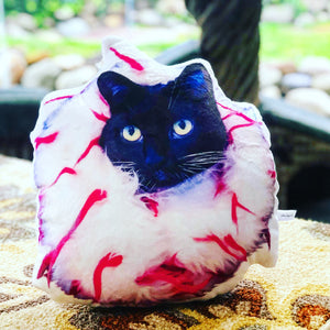 Custom Cat Shaped Photo Pillow - mrscopycat