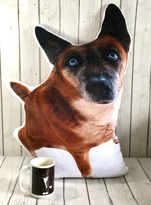 Custom Pet Shaped Photo Pillow | BIG-MrsCopyCat