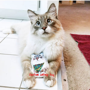Custom Pet Photo Pillow-MrsCopyCat